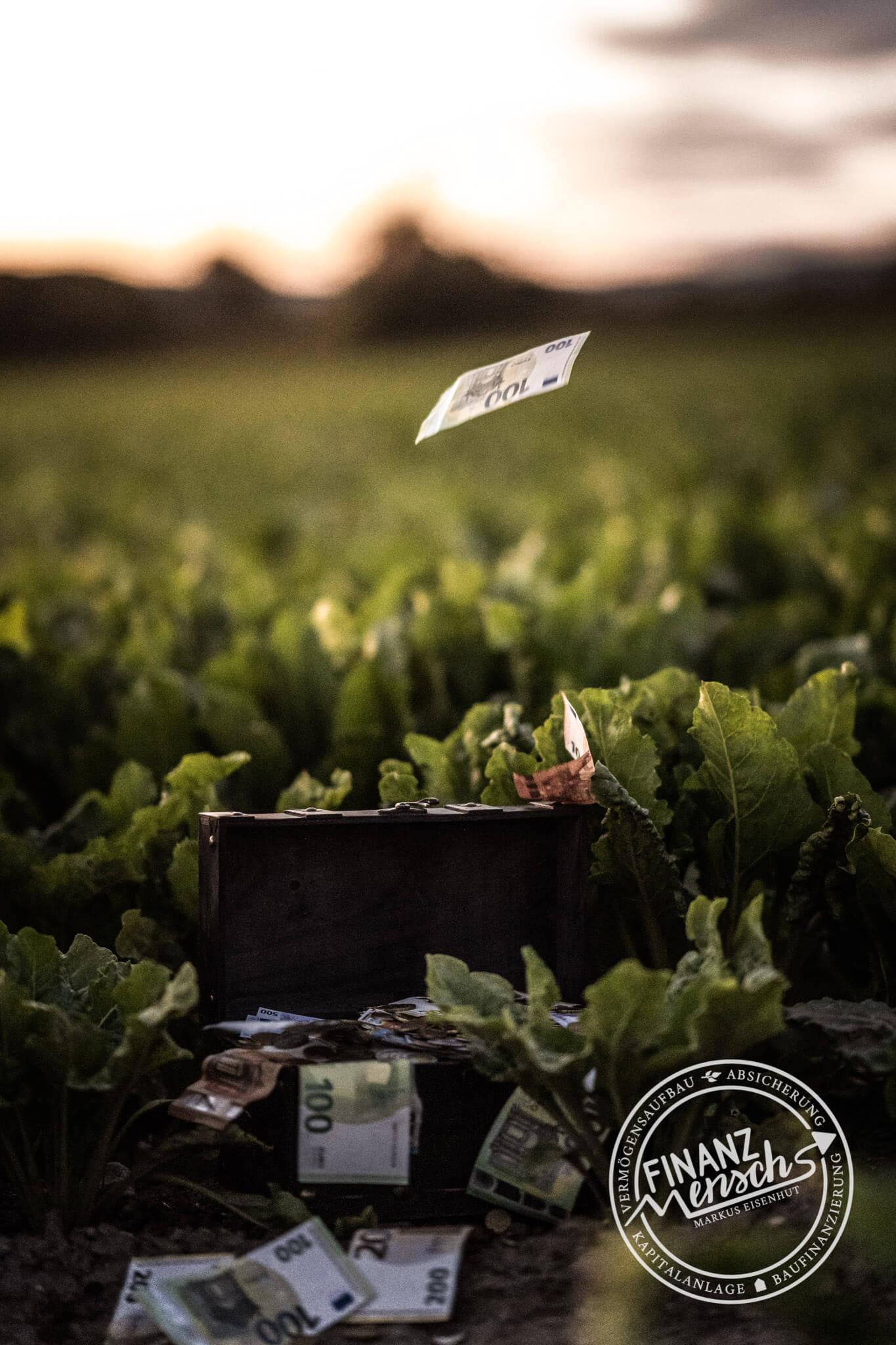 Finanzmensch Vorteile - Feld mit Truhe und Geld